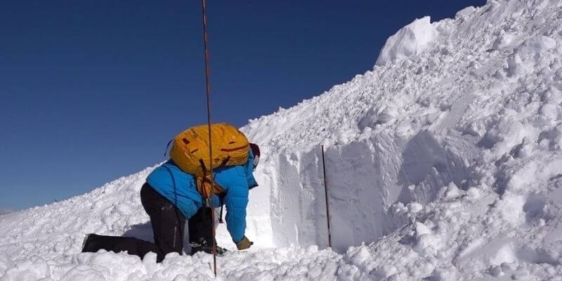 Avalanche Probe