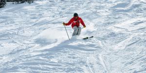 Ski Moguls