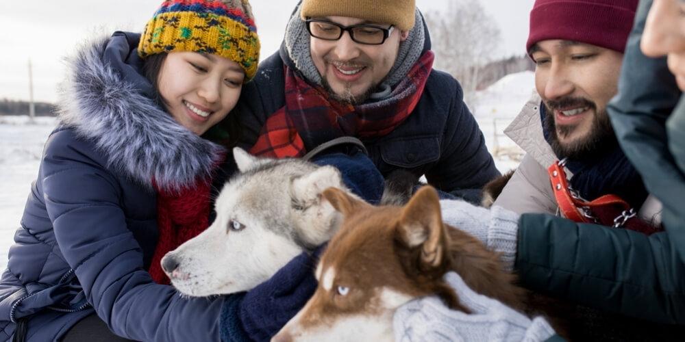 pet friendly ski resorts